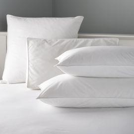 V 100% Cotton Microfibre Pillow