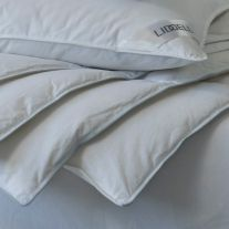 V 100% Cotton Interblend Duvet
